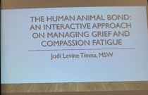 The Human Animal Bond: An Interactive Approach on Managing Grief and Compassion Fatigue