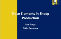 Trace Elements in Sheep Production