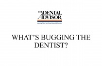 What's Bugging The Dentist?