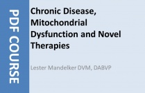 Chronic Disease Mitochondrial Dysfunction and Novel Therapies