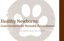 Healthy Newborns: Considerations for Neonatal Resuscitation