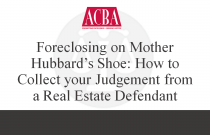 Foreclosing on Mother Hubbard's Shoe: How to Collect Your Judgement From a Real Estate Defendant - Recorded: 05/20/15
