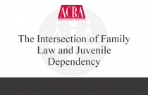 The Intersection of Family Law and Juvenile Dependency - Recorded: 04/28/16