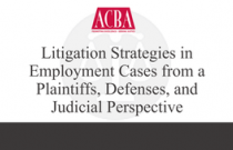 Litigation Strategies in Employment Cases From a Plaintiffs, Defenses and Judicial Perspective - Recorded: 06/16/16