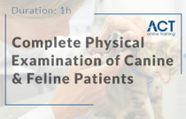 Complete Physical Examination of Canine and Feline Patients