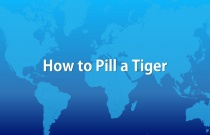 How to Pill a Tiger