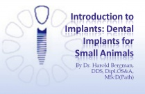 Course 21: Introduction to Implants: Dental Implants for Small Animals
