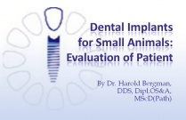 Course 22: Evaluation of Patient: Dental Implants for Small Animals