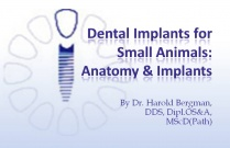 Course 23: Dental Implants for Small Animals: Anatomy & Implants