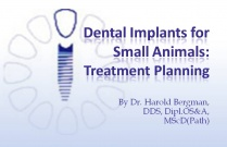 Course 24: Dental Implants for Small Animals: Treatment Planning