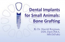 Course 25: Bone Grafting: Dental Implants for Small Animals: Bone Grafting