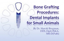 Course 26: Bone Grafting Procedures: Dental Implants for Small Animals