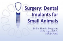 Course 27: Surgery: Dental Implants for Small Animals