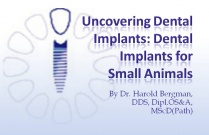 Course 28: Uncovering Dental Implants: Dental Implants for Small Animals