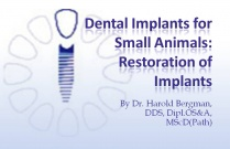 Course 29: Dental Implants for Small Animals: Restoration of Implants