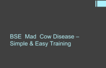 BSE Mad Cow Disease