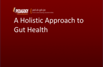 A Holistic Approach to Gut Health