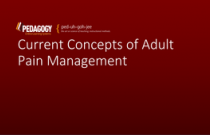 Current Concepts in Adult Pain Management