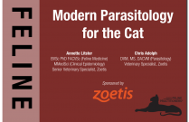 Modern Parasitology For The Cat: Fleas, Mites, and Worms, Oh My!
