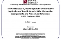 The Cardiovascular, Neurological and Detoxification Implications of Specific Genetic SNPs, Methylation Derangements and Amino Acid Deficiencies
