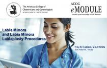 Labia Minora and Labia Minora Labiaplasty Procedures