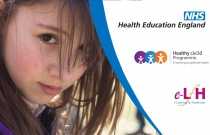 Health Communication and Young People: Setting the Scene