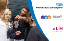 Health Promotion In Young People