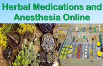 Herbal Medications and Anesthesia