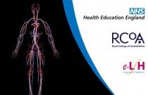 Cardiovascular Physiology - The Cardiovascular System (anaesthesia)