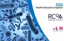 Clostridium difficile Infection in the Intensive Care Unit