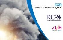 BJA Education: Smoke inhalation injury