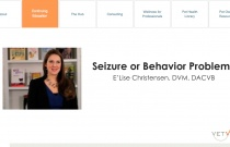 Seizure or Behavior Problem?
