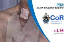 Image Interpretation - Vascular Ultrasound: Vascular Access