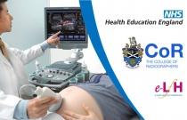 Image Interpretation - Obstetric Ultrasound: Third Trimester Scanning