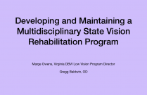 Developing and Maintaining a Multidisciplinary State Vision Rehabilitation Program
