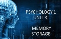 PSYCHOLOGY 1 UNIT 8: MEMORY STORAGE