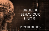 DRUGS & BEHAVIOUR UNIT 5: PSYCHEDELICS