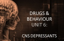 DRUGS & BEHAVIOUR UNIT 6: CNS DEPRESSANTS