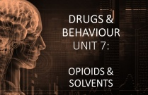 DRUGS & BEHAVIOURUNIT 7: OPIOIDS AND SOLVENTS
