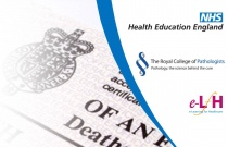 Completion of the Medical Certificate of Cause of Death Part 3: Scenarios