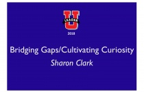 Bridging Gaps/Cultivating Curiosity
