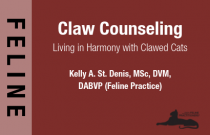 Claw Counseling: Living in Harmony with Clawed Cats