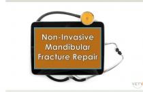 Non-invasive Mandibular Fracture Repair