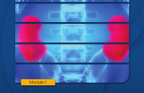 Kidneys: How They Work, How they Fail, What You Can Do: Kidney School Module 1