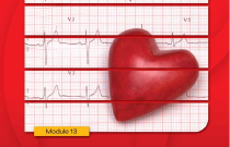 Heart Health and Blood Pressure: Kidney School Module 13