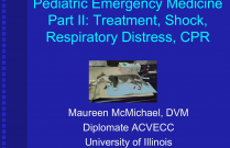 Pediatric Emergency Medicine, Part 2