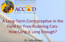 ACC&D's 6th International Symposium: A long-term contraceptive in the field for free-roaming cats: how long is long enough?
