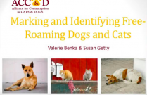 ACC&D's 6th International Symposium: Marking and identifying free-roaming cats and dogs