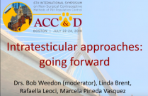 ACC&D's 6th International Symposium: Intratesticular approaches - going forward