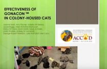 ACC&D's 6th International Symposium: Effectiveness of GonaCon in colony-house female cats: 2015-2018 results
